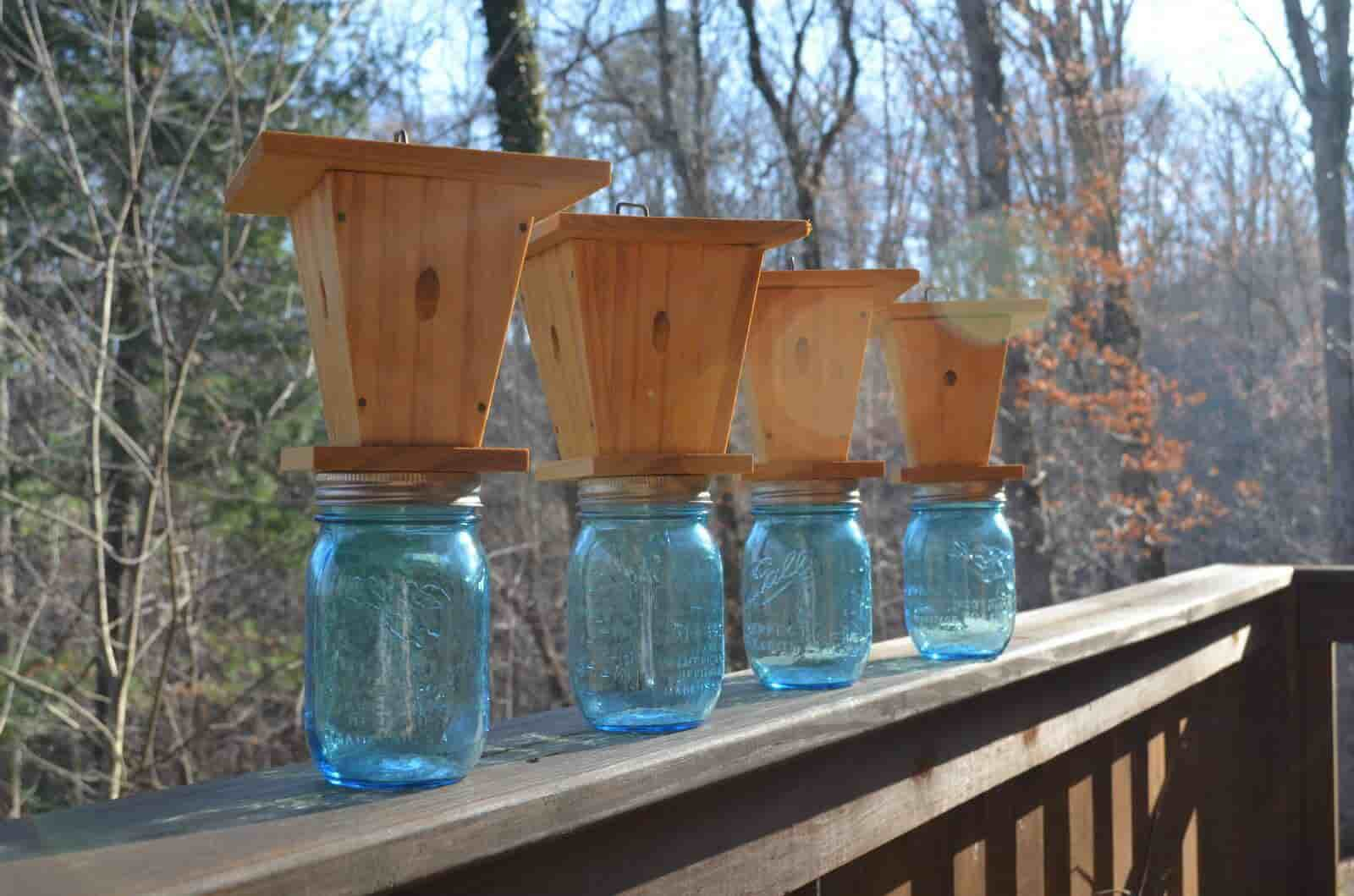How to Make a Carpenter Bee Trap at Home