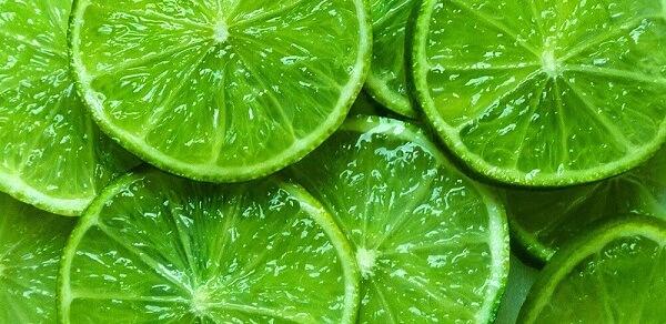 lemon for ant