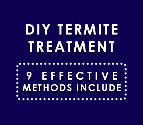 Diy Termite Treatment 9 Effective Methods Included