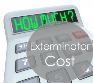 how much does an exterminator cost on average; manvspest