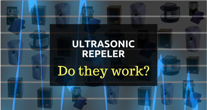 ultrasonic pest repellent works or not