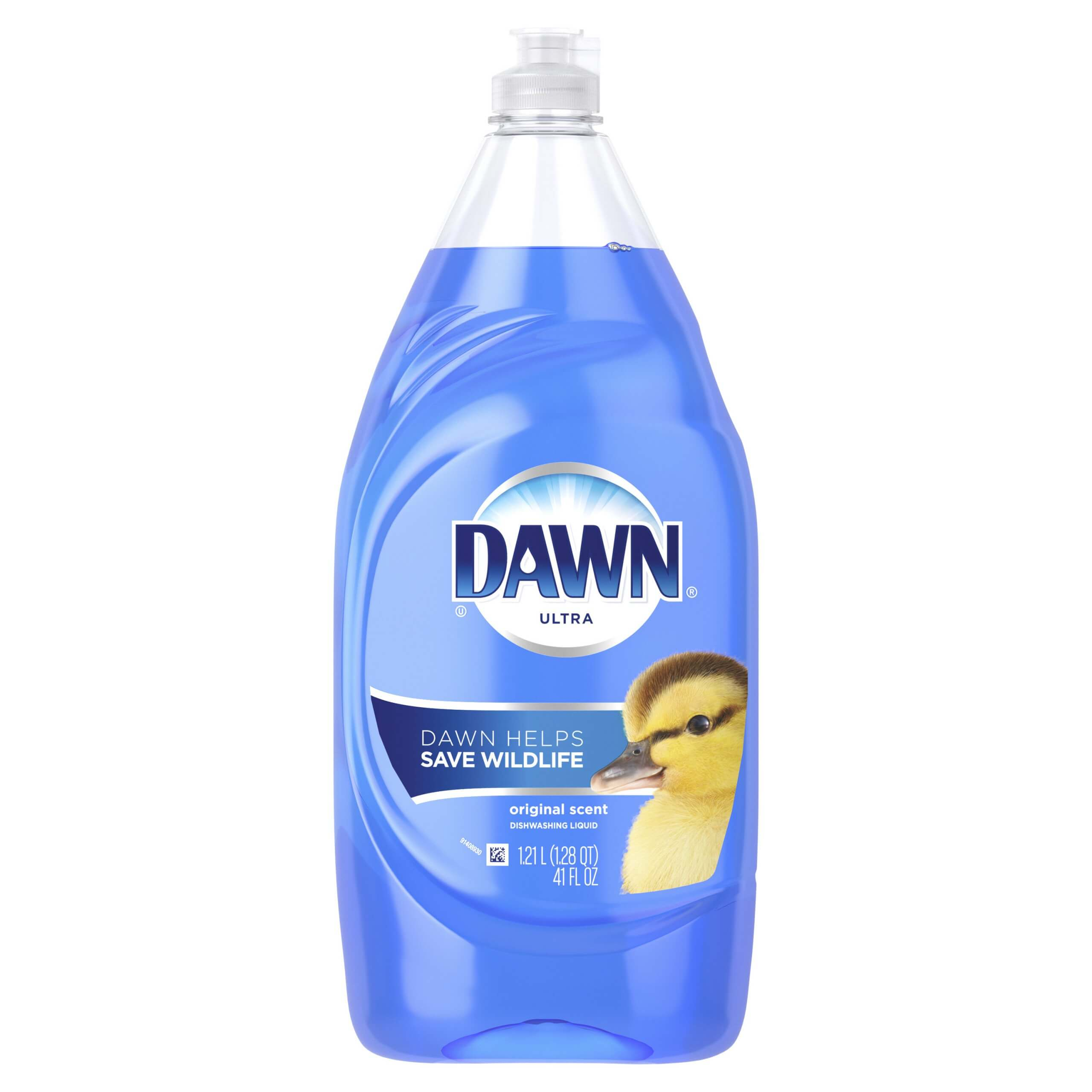 gnat treatment with dawn dish soap